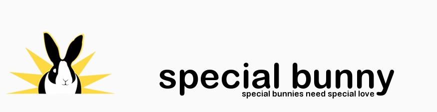 specialbunny.org